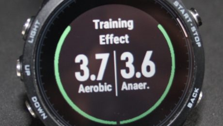 Training Effect 935